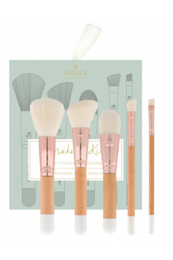 Kit professional brushes